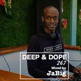 Summer House Music 2015 Club Mix by JaBig - DEEP & DOPE 267