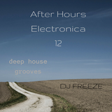 After Hours Electronica 12 \\ mixed by Freeze