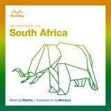 Soundscape 010: Blotchy (South Africa)