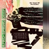 DJ Angel B! Presents: Soulfrica Vibecast (Episode XLVIII) Afro-Spring Deep