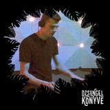 oriongroove + DJ Ren at Dzsungel Konyve 2018.10.30