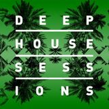 Future House Sessions #1 (by Paul Addam)
