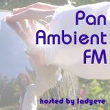 PanAmbientFM_99