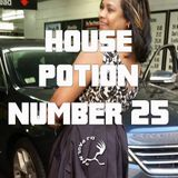 House Potion Number 25