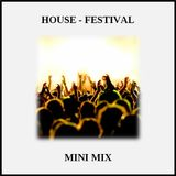 Mini Mix (House: Festival Mix)