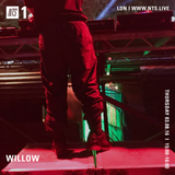 Willow - 3rd August 2017
