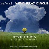 Hybrid Frames