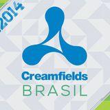 SET CREAMFIELDS BRASIL 2014 - DJ MICHEL SAAD