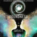 SOUNDNESS ep0029 underground dance music seasons.