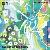 Sounds of the Dawn - 7th January 2017