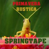 Primavera Rüstica (Dj Rüstico Springtape)