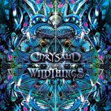 Chrysalid & Wildthings - SomethinGroovy Stage :: 11.06.2017