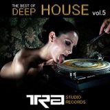 Best Of Deep House VOL.5