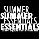 Sebjay Square - Summer Essentials 2017