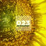 Microgarden #023 by Pervis Navarro at Loca Fm
