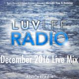 LuvleeRadio - December 2016 Live Mix **Music From 11/1/16 - 12/1/16**