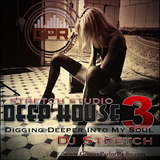 DEEP HOUSE 3 Digging Deeper Into My Soul ( Dj Stretch )