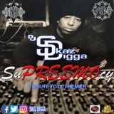 DJ Skaz Digga Producer Series - The SuPreemocy  (Tribute to DJ Premier)