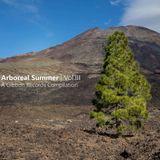 Gibbon Arboreal Summer Vol.III Continuous DJ Mix 1 - Moonface