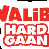 Denn4ce #Hardgaan Walibi DJ Contest (Genre = House & Progressive House)