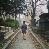 sinest8 - autumn fantasy