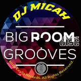 DJ Micah & project Stealth present... BIG ROOM Grooves