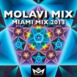 MOLAVI MIX - MIAMI MIX 2013