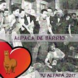 01 ALPACA DE BARRIO
