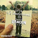 DYLAN SIMMS - Open Wonderland