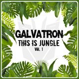 Galvatron - THIS is Jungle Vol.1
