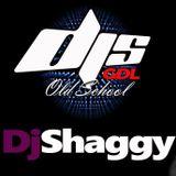 Dj Shaggy 80's 90's Mix