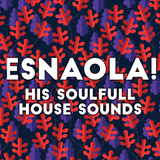 The Soulfull House from ESNAOLA!