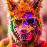 Festival Colors