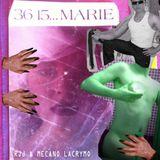 RJJ & MECANO LACRYMO - 3615 MARIE