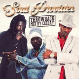 DJ CeeJay - Soul Provider Throwback (Reggae Mix)