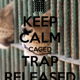 Caged Trap