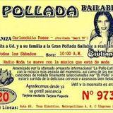 MIX POLLADA VOL1 CUMBIAS ,ROCK,SALSA Y MAS