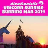 Unicorn Sunrise, Burning Man 2014