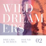 Wild Dreamers / Sound Mix 02