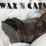 Wax n' Cats #92 w/  DJ Lgcc & FUNERALS