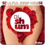 DJ Shum - Soulful Deep House # 4
