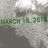 March 18, 2018