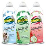OdoBan and The Smell Test