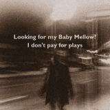 Looking for my Baby Mellow?