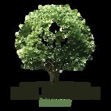 Rebel Foundation 015 - Kings Hi-Fi - 23/03/2014