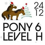 24.12.2015 - Pony6 im Levelhof