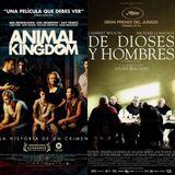 La Cartellera - Animal Kingdom + De Dioses y Hombres (3.2.11)
