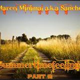 MARCEL MINIMAL  - SUMMERFEELINGS part 2 - 2015.mp3