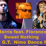 Calvin Harris feat. Florence Welch - Sweet Nothing (D & G.T.  Nimo Dance Mix)