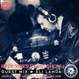 Deep Vibes - Guest ELI LANDA - 29.01.2017